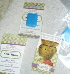 Make Scentsy Samples