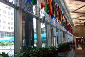 State Dept Flags in Lobby