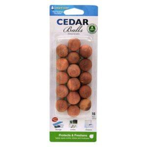 fruit flies don't like cedar
