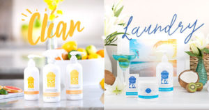Scentsy Spring Cleaning